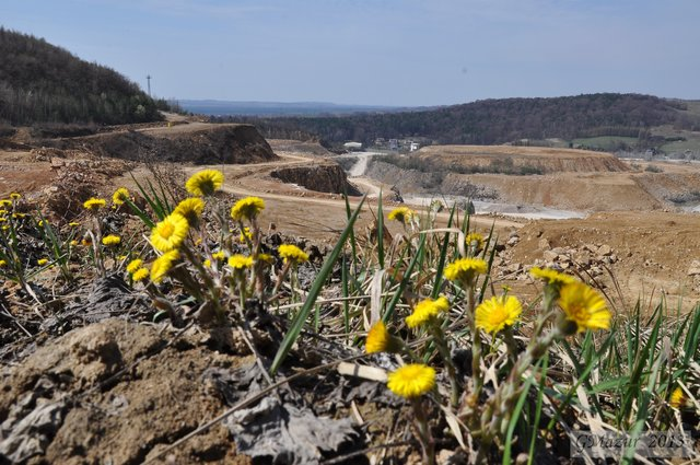 Grupa TAURON: Nowe złoże w Kopalni Wapienia Czatkowice